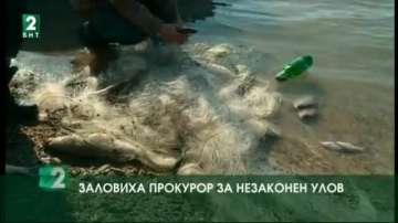 Заловиха прокурор за незаконен улов