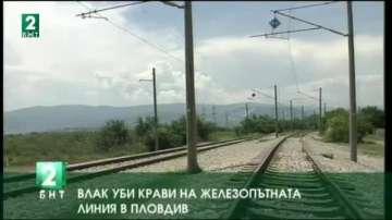 Влак уби крави на железопътната линия в Пловдив