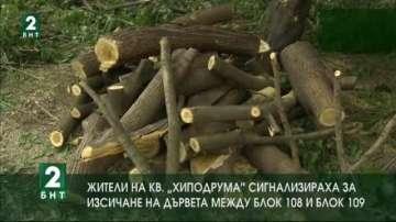 Жители на квартал Хиподрума сигнализираха за изсичане на дървета