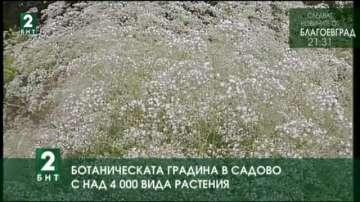 Ботаническата градина в Садово с над 4000 вида растения