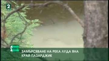 Замърсяване на река Луда Яна край Пазарджик