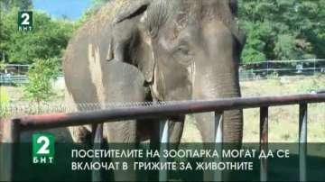 Животните в Софийския зоопарк се разхлаждат с плодове и студен душ