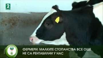 Фермери: Малките стопанства все още не са рентабилни у нас