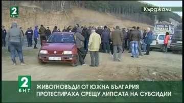 Животновъди от Южна България протестираха срещу ниските изкупни цени на млякото
