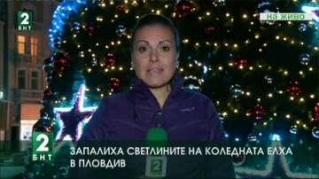 Включиха светлините на коледната елха в Пловдив