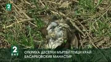 Откриха десетки мъртви птици край Басарбовския манастир