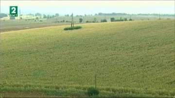 Фалшиви договори за пренаемане на земеделска земя в Русенско