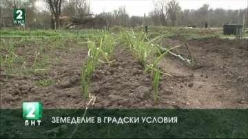 Земеделие в градски условия