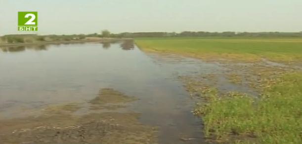 Русенци предлагат средство срещу ерозията на почвата