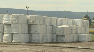Започна оглед на още 102 контейнера с италиански боклук на пристанище във Варна
