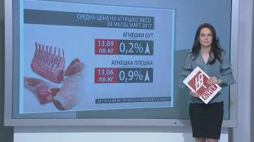 Вносното агнешко подбива приходите на българските животновъди