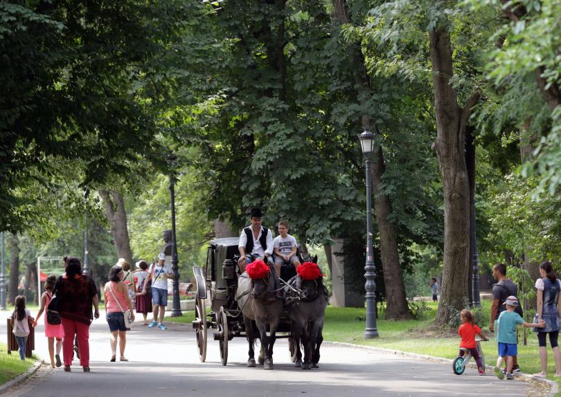 снимка 4 Борисовата градина на 135 години (СНИМКИ)