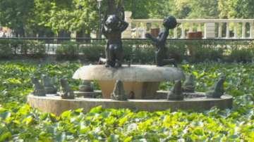 135 години Борисова градина