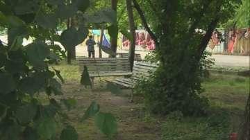 Започват маркиране на опасни дървета в Борисовата градина