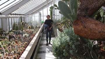 Ботаническата градина на БАН пази растения, свидетели на две войни