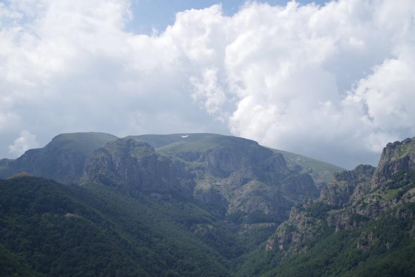 Вековните букови гори на резерватите в Национален парк