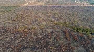 Бразилия няма ресурси да се бори с пожарите в Амазонската джунгла