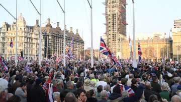 Протест на привърженици на Брекзит в Лондон, Банкси нарисува парламент с маймуни