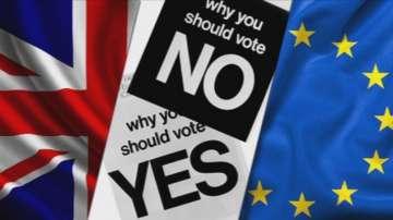 Очаква се 60-80% избирателна активност на референдума във Великобритания