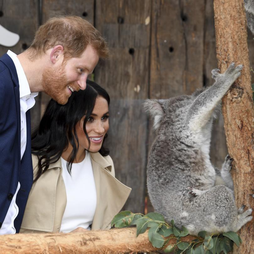 Меган и Хари продължават визитата си Австралия. Херцозите на Съсекс