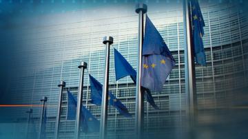 Във всички държави от ЕС, с изключение на Дания, има диференцирани ставки на ДДС