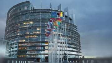 Задръствания в Брюксел заради гладни мишки?