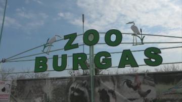 Ден на отворените врати в зоопарка в Бургас