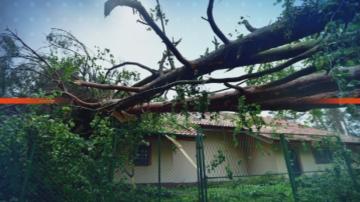 Бури вилняха в Европа и взеха жертви