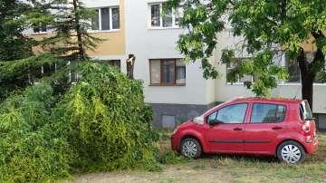 Буря нанесе материални щети в Благоевград (ВИДЕО + СНИМКИ)