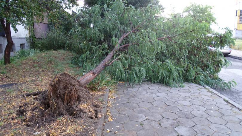 снимка 1 Буря нанесе материални щети в Благоевград (ВИДЕО + СНИМКИ)