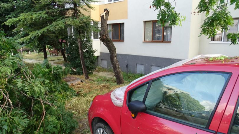 снимка 3 Буря нанесе материални щети в Благоевград (ВИДЕО + СНИМКИ)