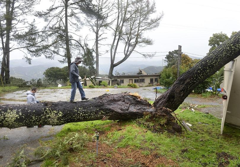 Силна буря взе две жертви в Калифорния