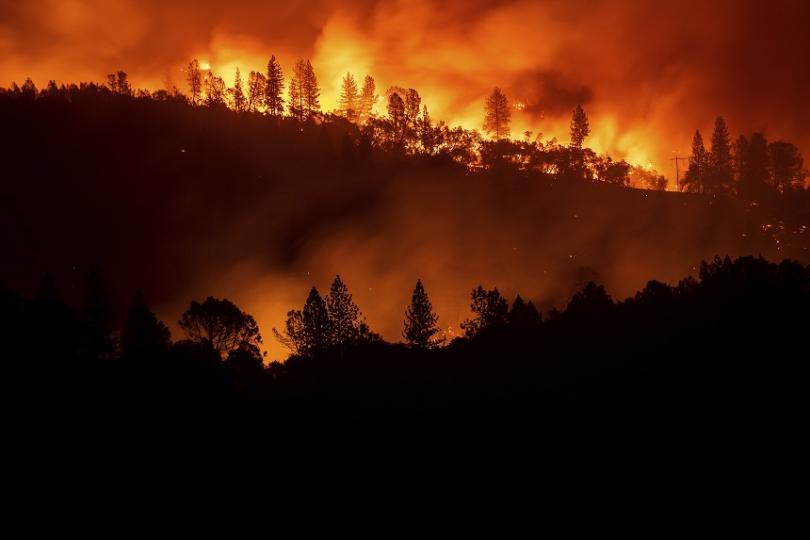25 са вече жертвите на горските пожари в Калифорния