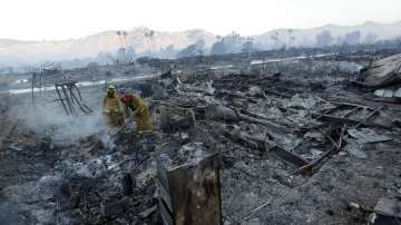 Няма информация за пострадали българи при горските пожари в Калифорния