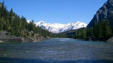 Откриха телата на алпинистите, изчезнали под лавина в Канада