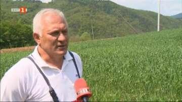 Частен случай: Собствениците на земеделска земя срещу стълбовете на ЧЕЗ