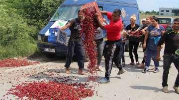 Производители на череши протестираха срещу ниските изкупни цени