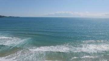Отпускат пари за наблюдение на морската вода и биоразнообразието в Черно море