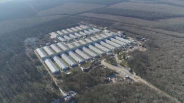 Засилени мерки за биосигурност в Шуменско след новото огнище на АЧС