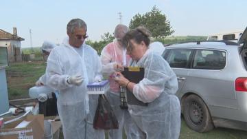ОДБХ-Плевен: Мерките срещу чумата по свинете са непопулярни, но няма друг начин