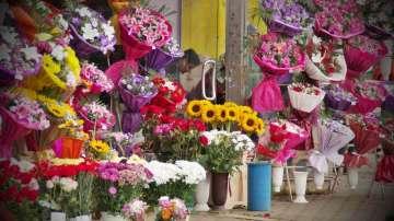 Дни преди 8-ми март: Глобяват за  незаконна продажба на защитени цветя