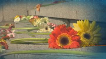 Цвете за нея - в памет на убити и в помощ на насилвани в дома си българки