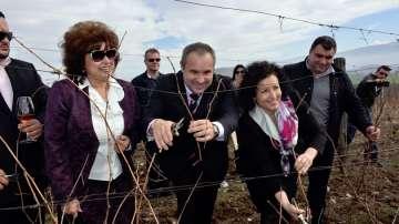 Над 50 милиона литра вино ще изнесе България тази година