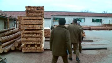 Инспектори и НАП проверяват бази за преработка на дървен материал в Пловдив