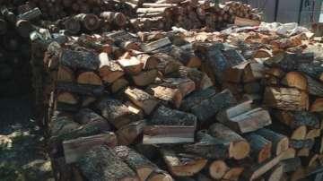 Над 1400 молби за енергийни помощи са подадени в Пловдив