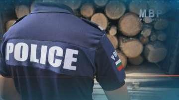 Спецсъдът пусна под домашен арест двама от обвинените в незаконна сеч