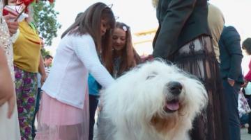 Десетки училища в Пловдив се присъединиха към дарителска кампания