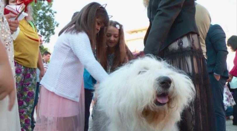 Десетки училища в Пловдив се присъединиха към дарителската кампания за