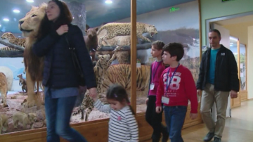9-годишни стажанти в Природонаучния музей в Пловдив