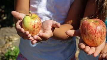 Как новите технологии в храненето помагат за по-здравословен режим при децата
